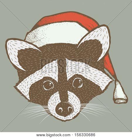 Raccoon vector illustration. Raccoons head with santa hat