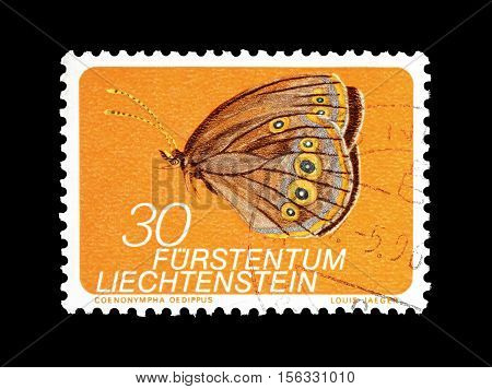 LIECHTENSTEIN - CIRCA 1973 : Cancelled postage stamp printed by Liechtenstein, that shows Butterfly.
