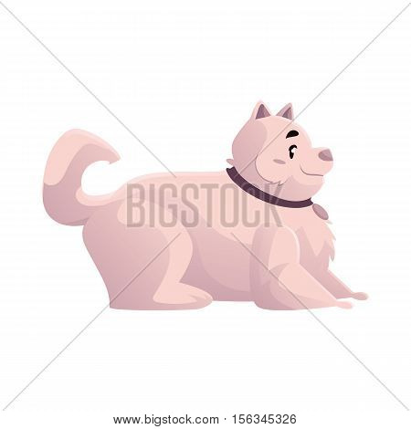 Cute and funny fat, chubby, fluffy white dog, cartoon vector illustration isolated on white background. Overweight chubby dog with a fluffy tail, fatty overfed domestic pet