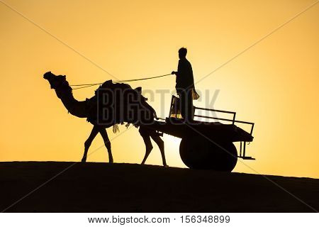 Rajasthan travel background - camel silhouette with the wagon in dunes of Thar desert on sunset. Jaisalmer, Rajasthan, India
