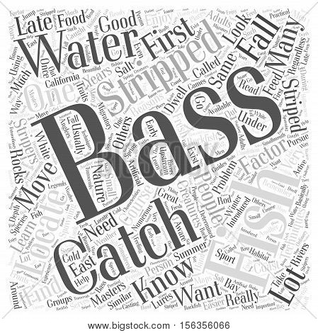 striped bass fishing word cloud concept text background