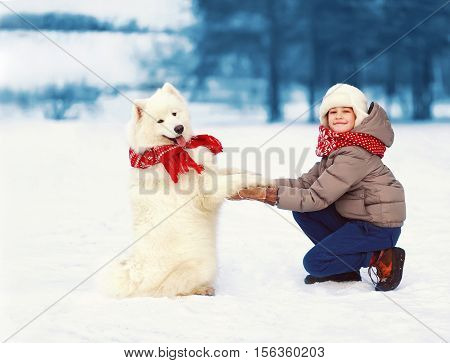 Christmas Happy Teenager Boy Playing With White Samoyed Dog On Snow In Winter Day, Cheerful Dog Give