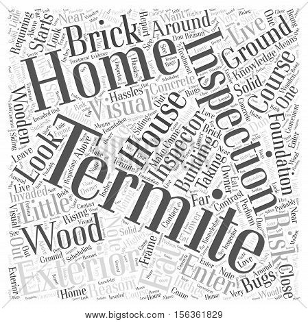 Termite Inspection Exterior word cloud concept text back ground