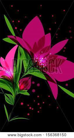 Bright pink flower on black background editable vector illustration