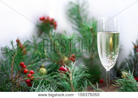 Christmas Still Life, Champaign, Pine Branches, Red Rowan, Golden Balls