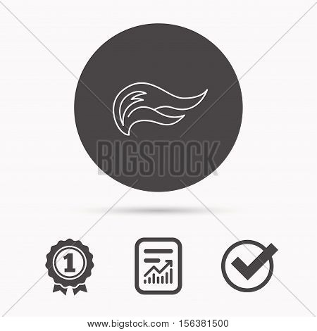 Fire flames icon. Blazing bonfire sign. Report document, winner award and tick. Round circle button with icon. Vector