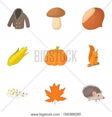 Season of year autumn icons set. Cartoon illustration of 9 season of year autumn vector icons for web