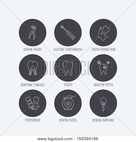 Tooth extraction, electric toothbrush icons. Dental implant, floss and dentinal tubules linear signs. Toothpaste icon. Linear icons in circle buttons. Flat web symbols. Vector