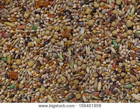 Close up of a variety of bird seed for budgies