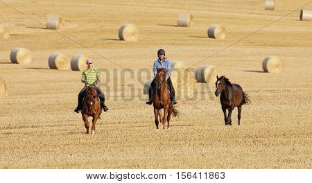 Two Women Horseback Riding in a Field with Bales of Hay
