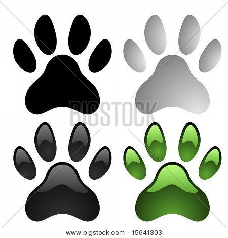 Paw prints vector set isolated on white background. poster