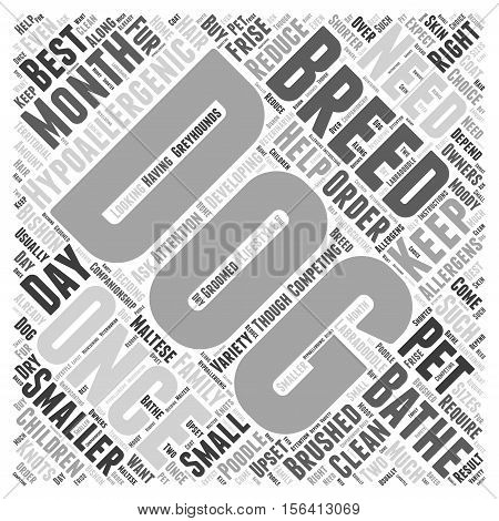 what breed hypoallergenicdogs are right for your family word  text background cloud concept