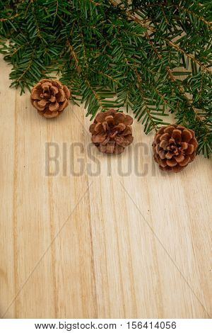 Christmas decoration background: pine and Pine cones