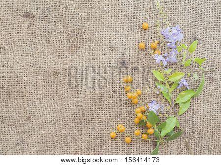 background nature purple flowers on old sack