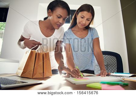 Two Business Entrepreneurs Designing Packaging