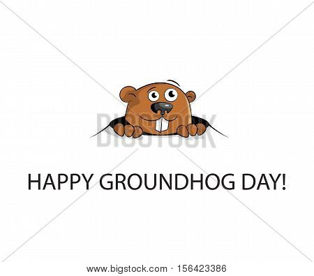 Groundhog peeking out of a hole. isolated on white background. Flat design. Vector illustration.
