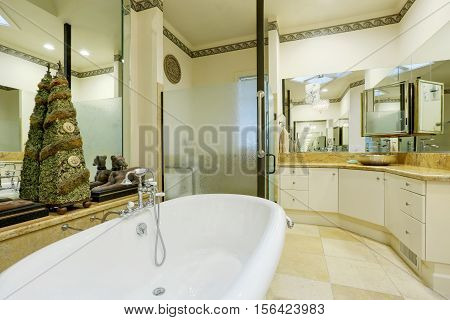 Amazing Bathroom Interior With Mirror Walls And Statues.