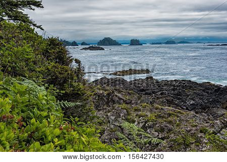 West coast Vancouver Island near Ucluelet British Columbia Canada on the Wild Pacific Trail with Broken Group Islands in the background