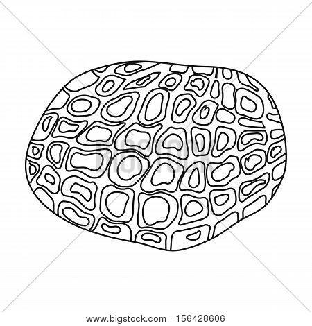 Black truffles icon in outline style isolated on white background. Mushroom symbol vector illustration.