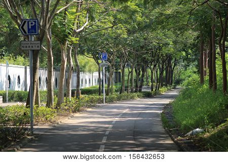 Tree lined country road at tko hk