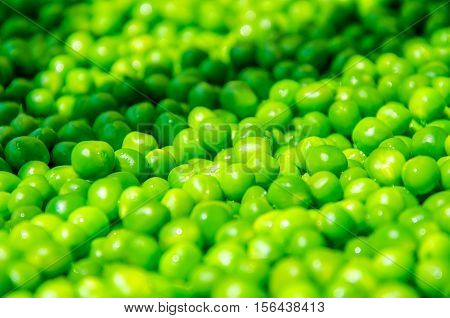 a lot of green peas. green balls of pea pod