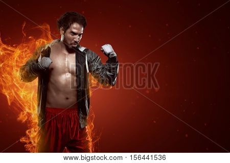 Portrait Of Muscular Asian Male Boxer