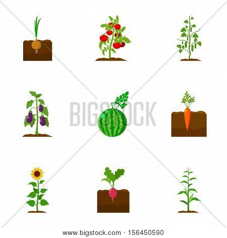 Plant set icons in cartoon style. Big collection of plant vector symbol stock