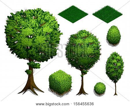 Set of isometric Trees. Realistic isometric bushes trees and grass isolated on white background. Flat isometric icon. Vector illustration