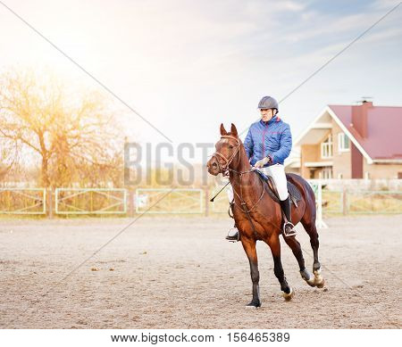 Sportsman Riding Horse On Equestrian Competition.