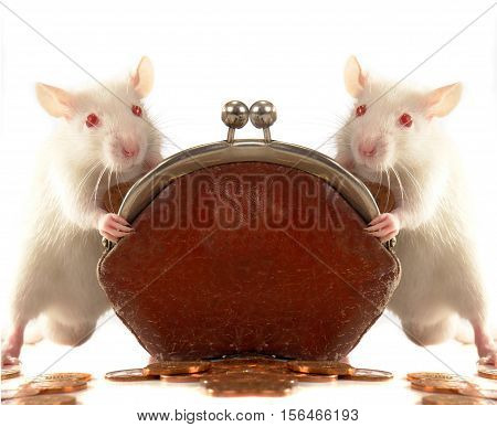 two rats with a purse on a white background