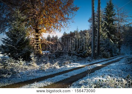 Erster Schnee des Jahres an einem schönen Novembervormittag.