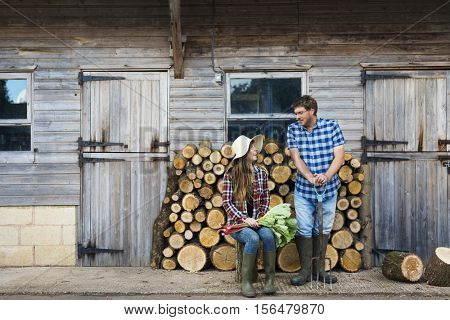 Firewood Fuelwood Lumber Timber Lumber Log Concept