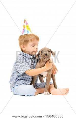 Boy and puppy pit bull of given a present to birthday, isolated on white background