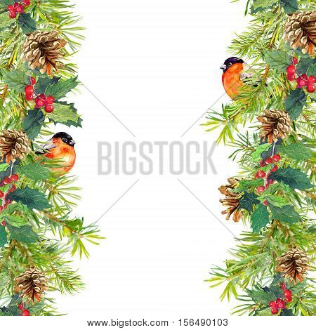 Fir tree, mistletoe, red finch bird. Christmas seamless border. Watercolor card