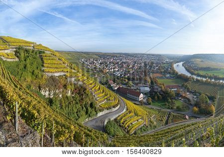 Vineyards in autumn overlooking Mundelsheim at the river Neckar in Germany