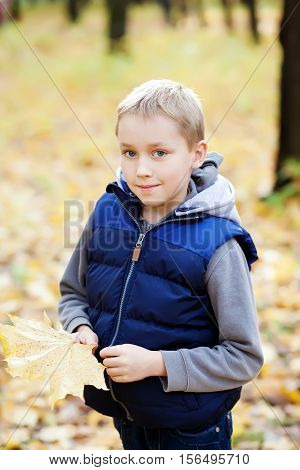 Happy boy in the park. Cute smiling kid enjoying fall. Nature background.