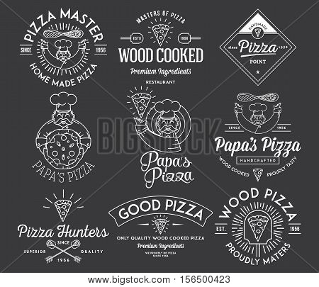 Vector handmade and wood cooked pizza icons and illustrations