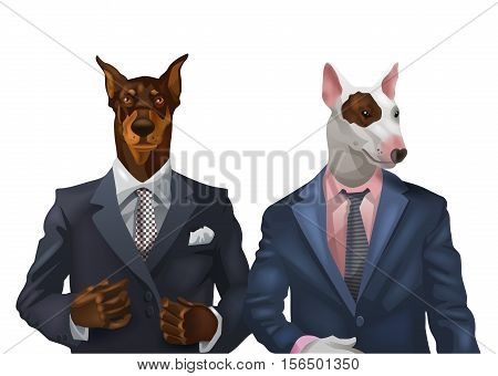 illustration of doberman and bullterrier dressed up in office suit isolated on white background. Vector illustration.