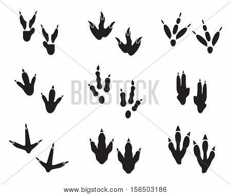 Dinosaur footprint tracks black set. Paw, animal monster, ancient reptile. Vector illustration