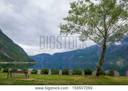 Bench and tree at fjord embankment. Norway summer landscape.