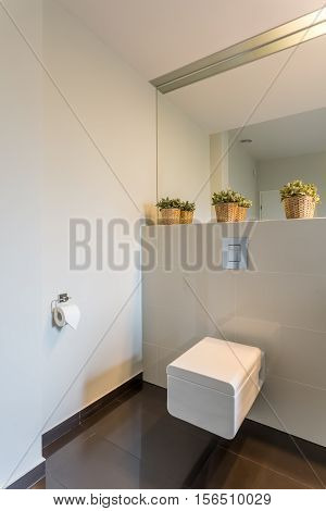 Modern Toilet With Beige Tiles