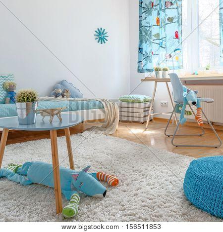 Spacious Blue Children's Room