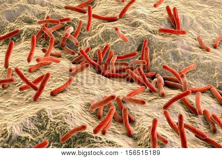 Mycobacterium tuberculosis bacteria inside human body, close-up view. 3D illustration