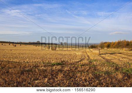 Round Bales In Autumn