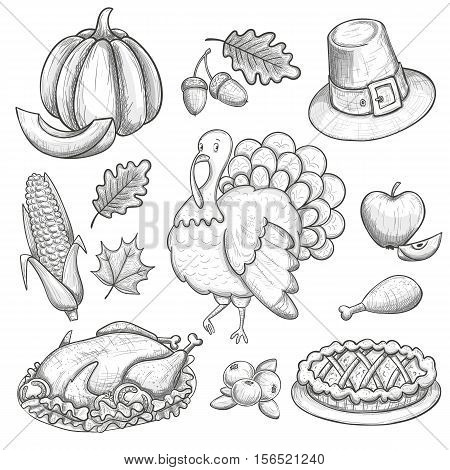 Set of Thanksgiving icons. Sketch style Thanksgiving day greeting card. Vintage Thanksgiving food leaves and turkey. Thanksgiving Day drawing background for decoration. Vector.