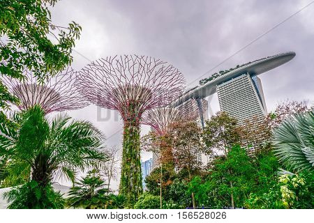 Marina Bay Sands and Gardens by the Bay in Singapore