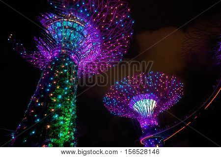 Illuminated Supertrees at Garden by the Bay n Singapore