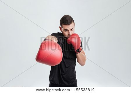Fashion boxer. slap at the camera. looking at camera. isolated gray background