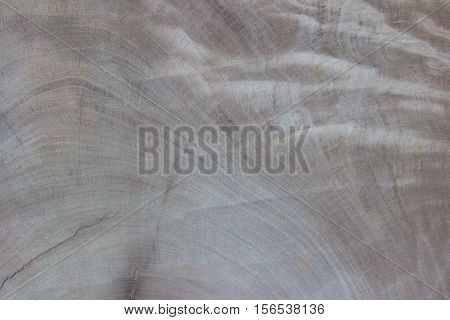 white wooden wall texture background. wood all antique cracking furniture painted weathered white vintage peeling wall.