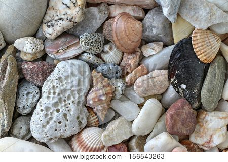Detail of the minerals pebble stones and shells